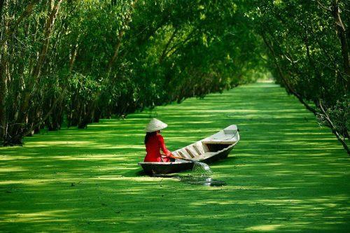 The Mekong Delta near Ho Chi Minh City, Vietnam