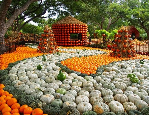 Day of the dead fest at the Dallas arboretum